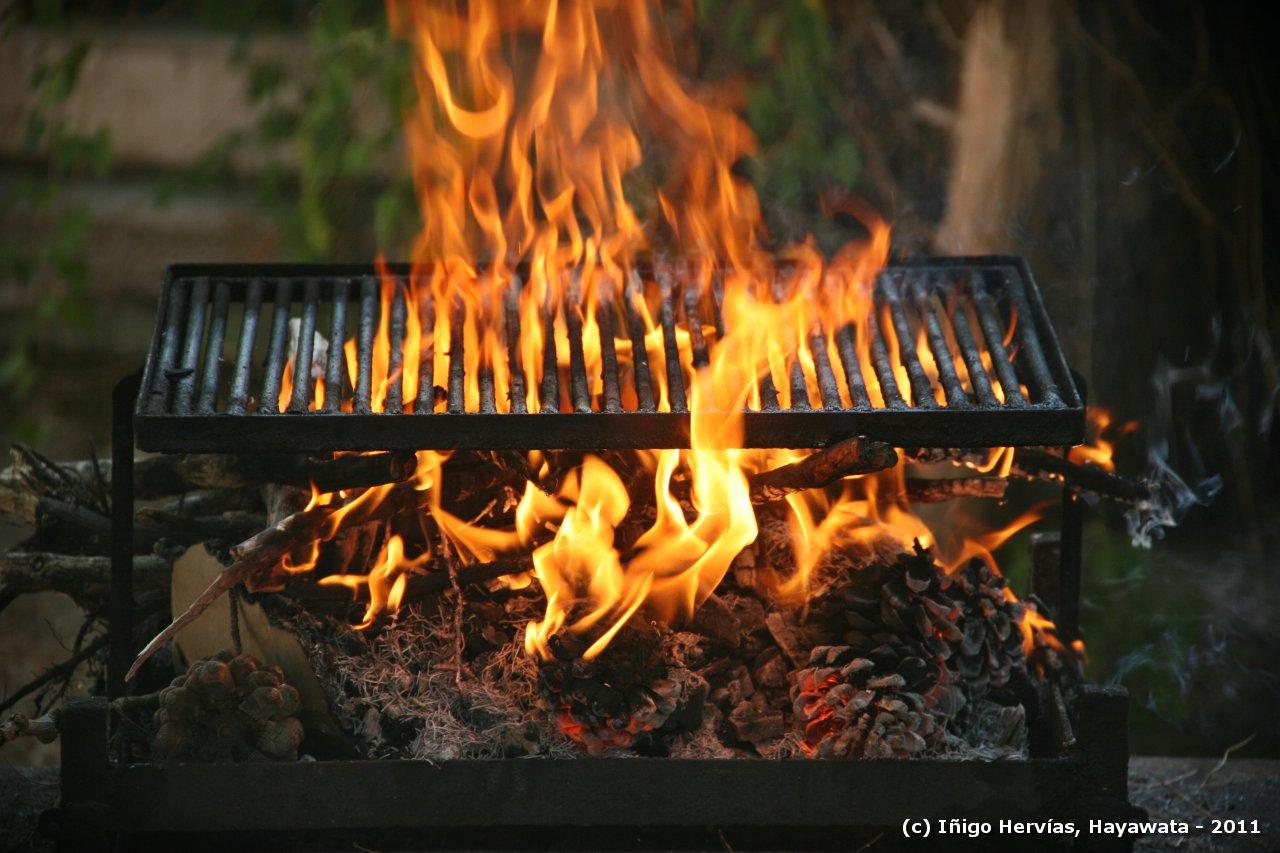 5 trucos para encender el fuego que tal vez no conoc as - Parrilla de la vanguardia ...